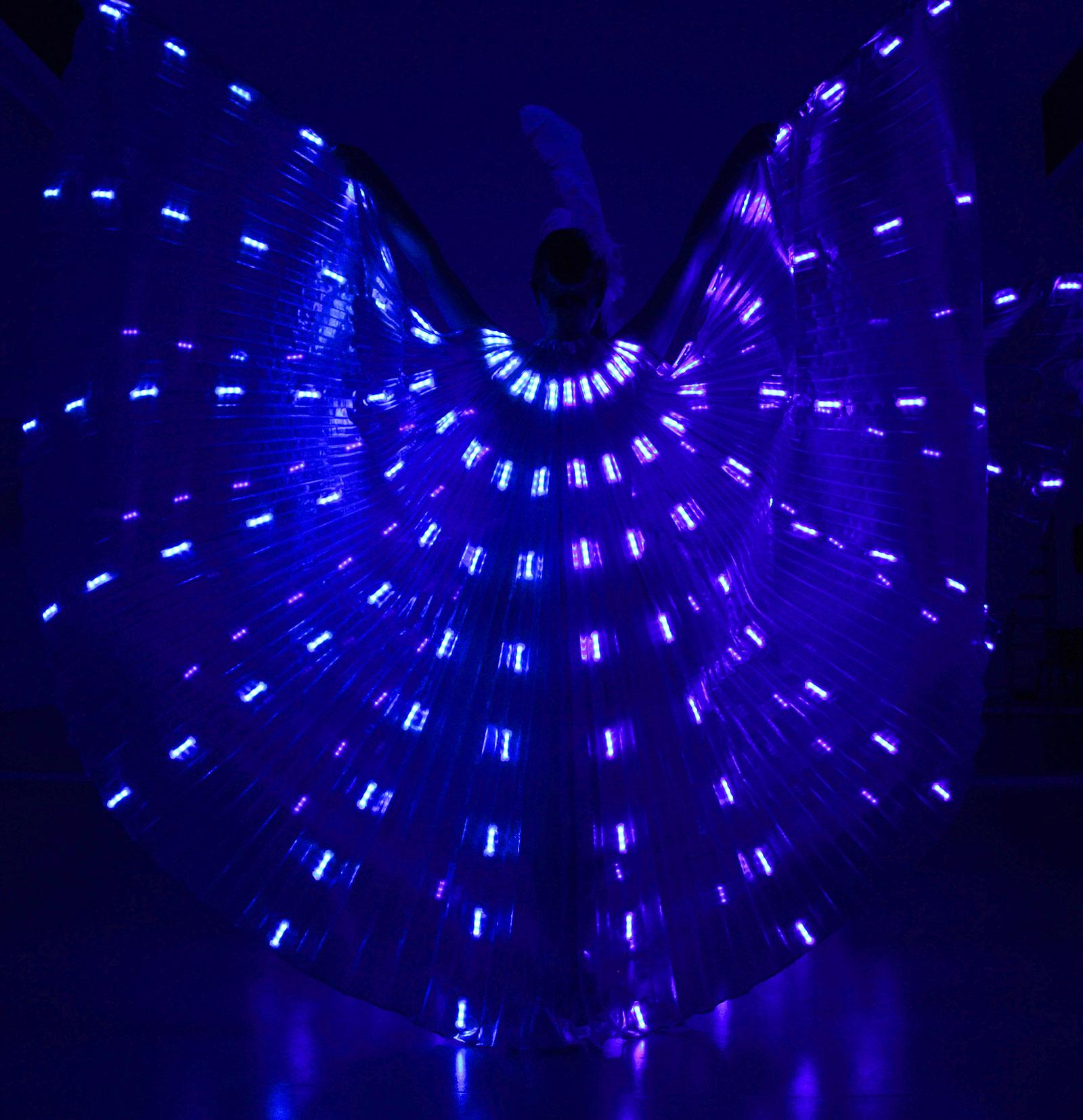 LED Wings